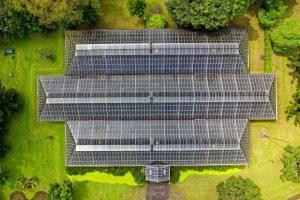 Stát dal na podporu fotovoltaické energie 119 miliard korun, většina k solárníkům nedorazila