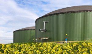 Ivan Noveský: Českým spotřebitelem zaplacený biometan zlepší životní prostředí v Rusku nebo v USA